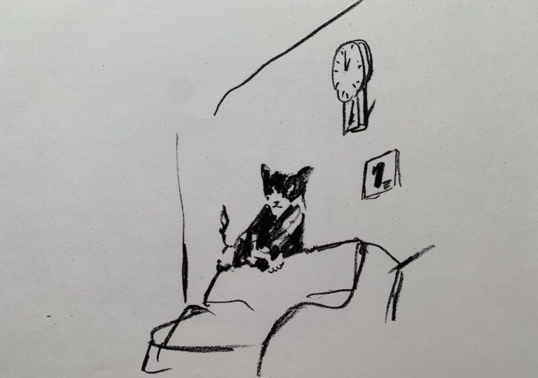 おーくん・あきらの絵本「GATITO」ページ8