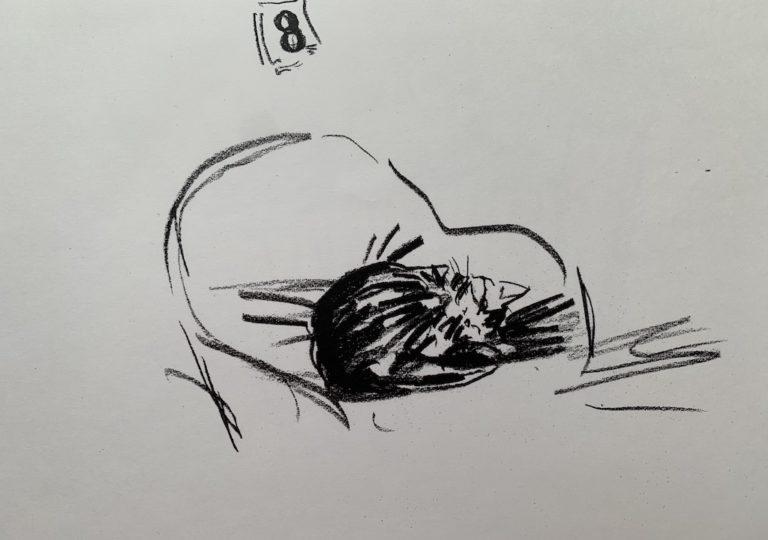 おーくん・あきらの絵本「GATITO」ページ11