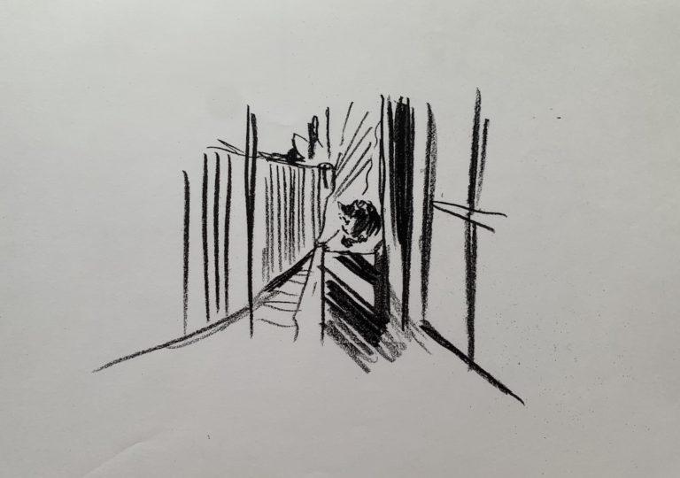おーくん・あきらの絵本「GATITO」ページ12