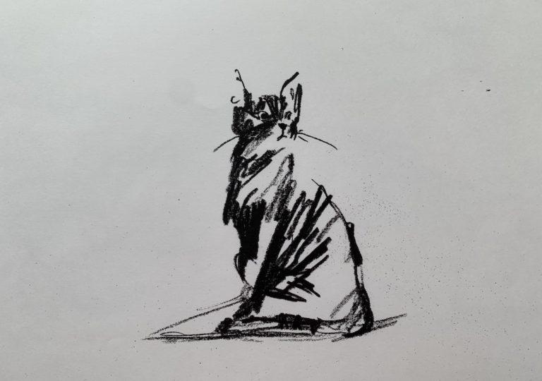 おーくん・あきらの絵本「GATITO」ページ15