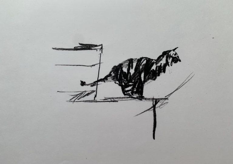 おーくん・あきらの絵本「GATITO」ページ24