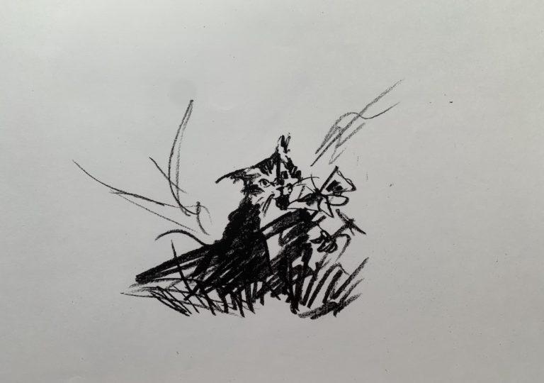 おーくん・あきらの絵本「GATITO」ページ35