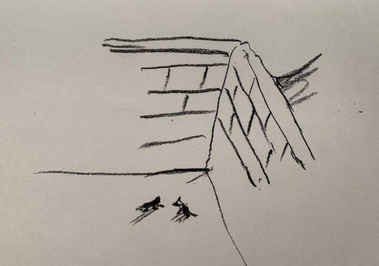 おーくん・あきらの絵本「GATITO」ページ46