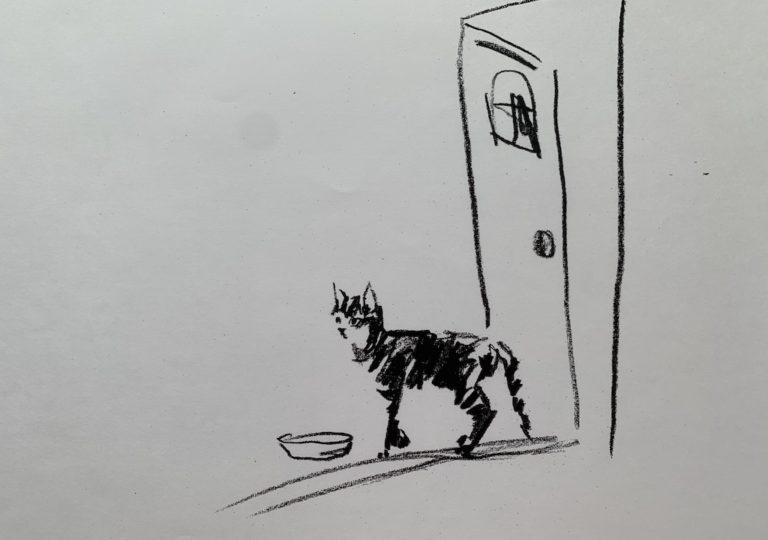 おーくん・あきらの絵本「GATITO」ページ7
